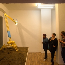Pascal Howe bei Plattforms Gallery, Foto: Burat
