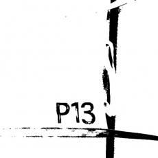 passagier13-web